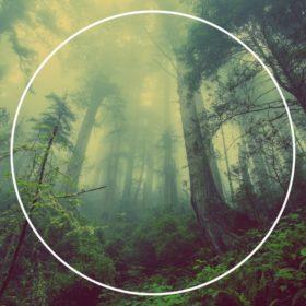Macro Nature Biomes